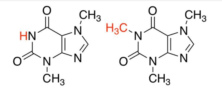 Theobromin koffein